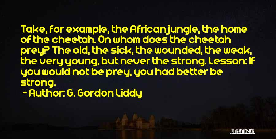 I Am Very Sick Quotes By G. Gordon Liddy
