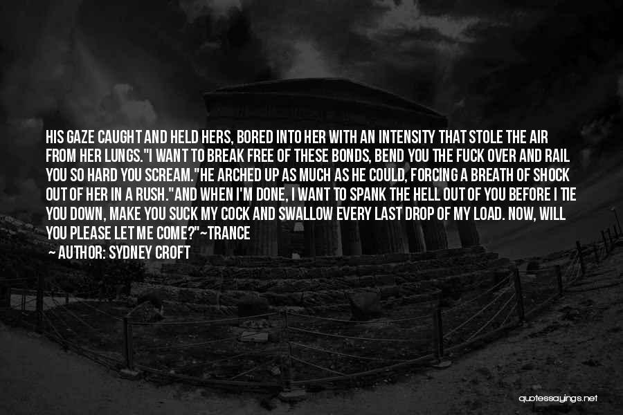 I Break Down Quotes By Sydney Croft