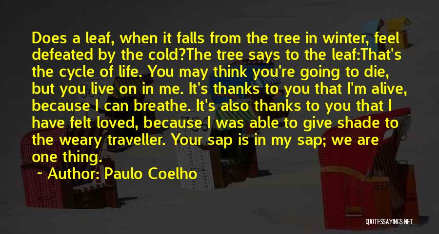 I Breathe Your Love Quotes By Paulo Coelho
