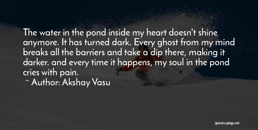 I Can't Cry Anymore Quotes By Akshay Vasu