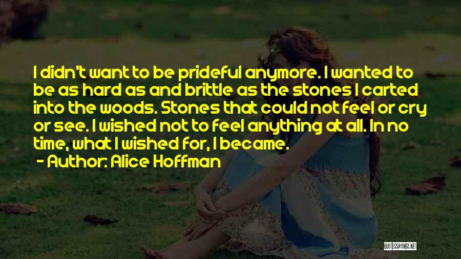 I Can't Cry Anymore Quotes By Alice Hoffman