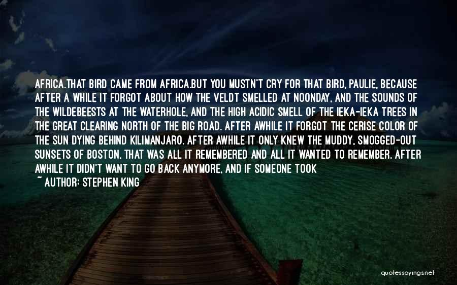 I Can't Cry Anymore Quotes By Stephen King
