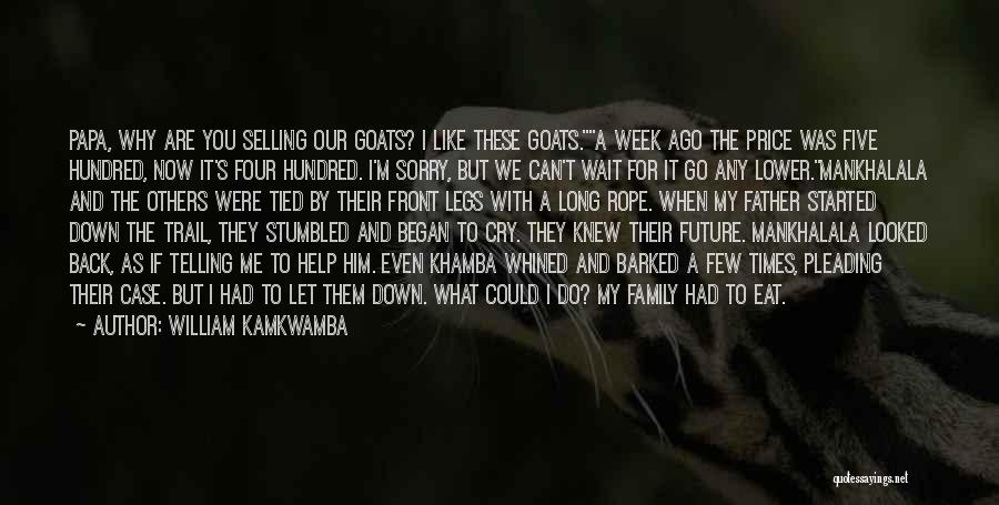 I Can't Help But Cry Quotes By William Kamkwamba
