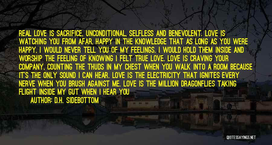 I Can't Tell You My Feelings Quotes By D.H. Sidebottom