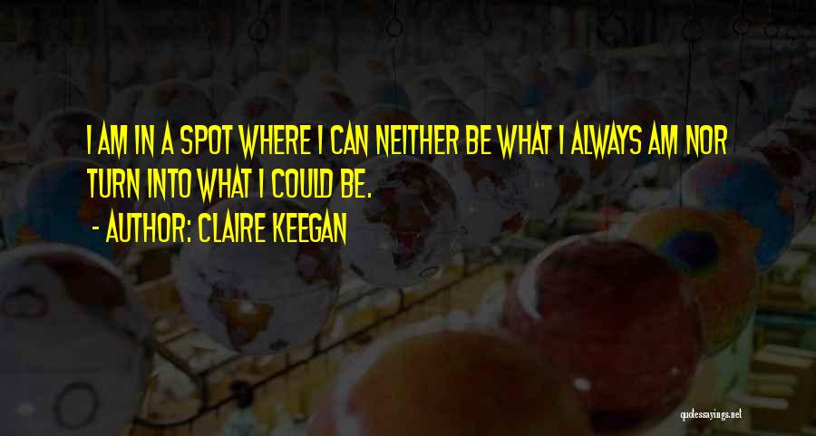 I Could Change Quotes By Claire Keegan