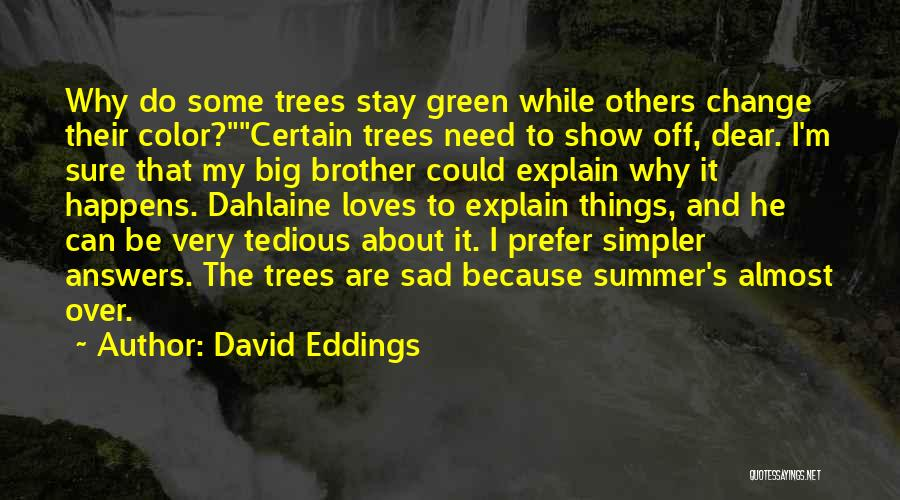 I Could Change Quotes By David Eddings