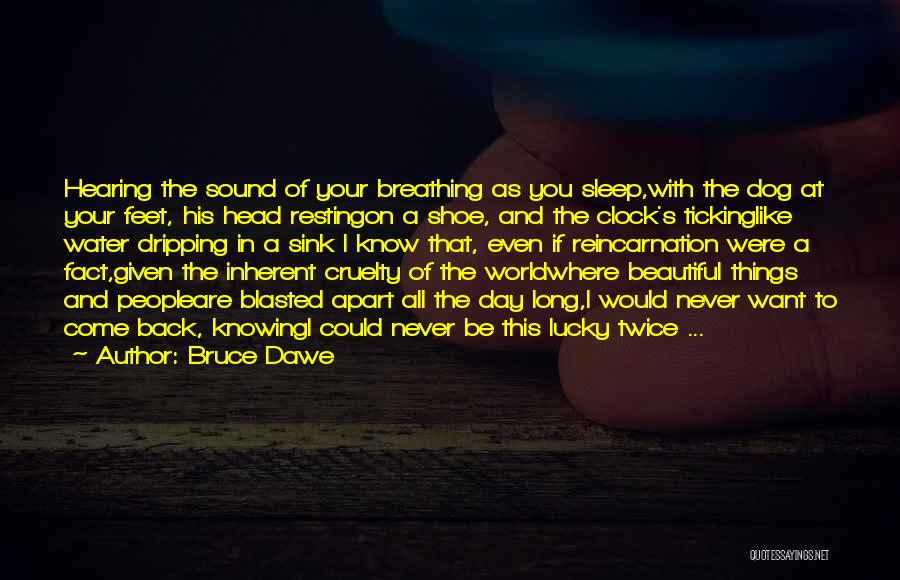 I Could Sleep All Day Quotes By Bruce Dawe
