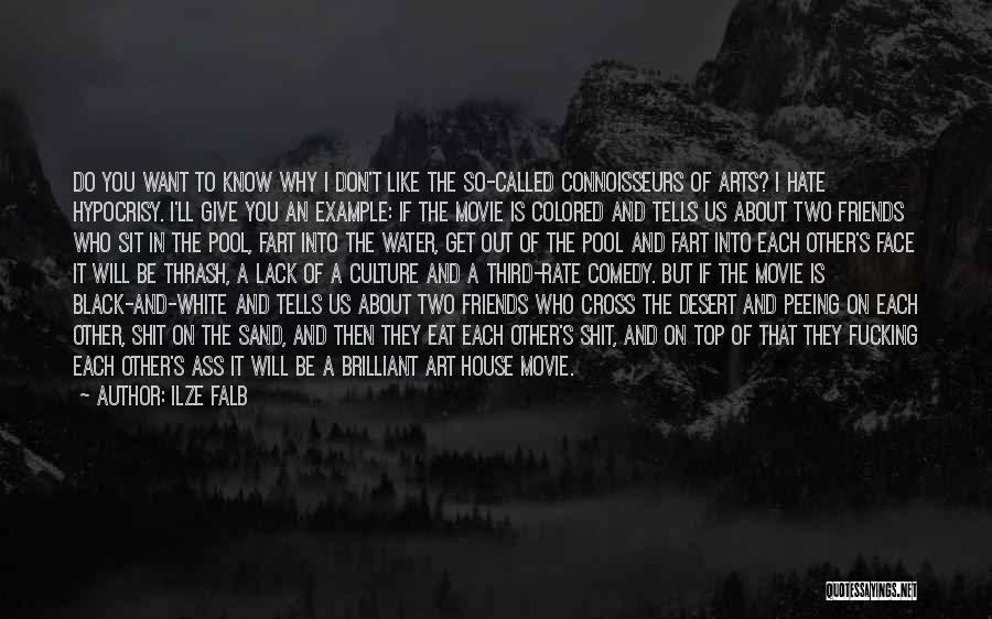 I Do But I Don't Movie Quotes By Ilze Falb