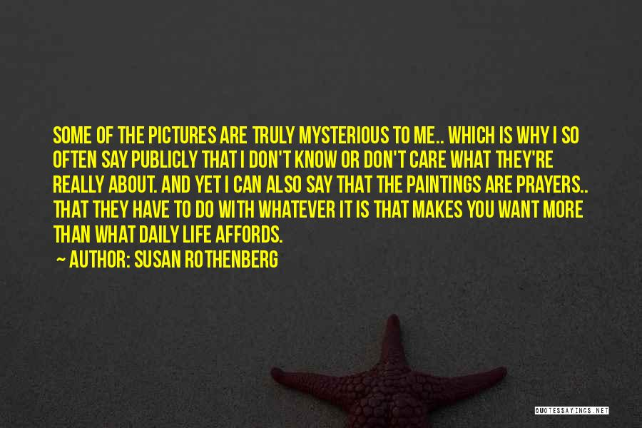 I Don't Care What You Do Quotes By Susan Rothenberg