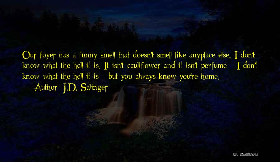 I Don't Like You Funny Quotes By J.D. Salinger