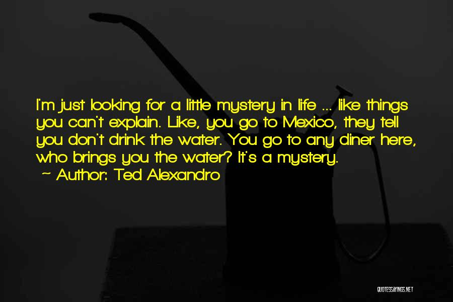 I Don't Like You Funny Quotes By Ted Alexandro