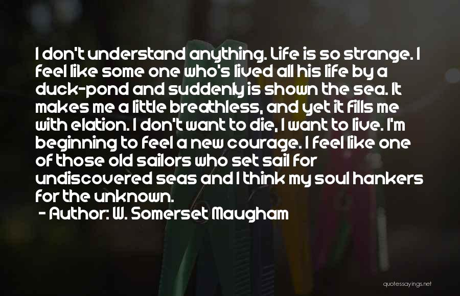 I Don't Understand Life Quotes By W. Somerset Maugham