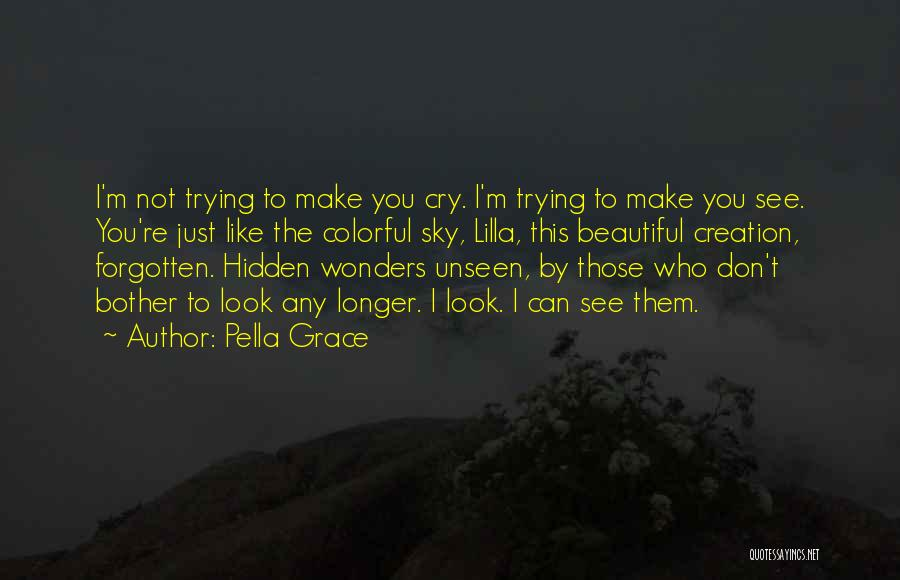 I Don't Want To See You Cry Quotes By Pella Grace