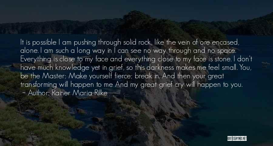 I Don't Want To See You Cry Quotes By Rainer Maria Rilke