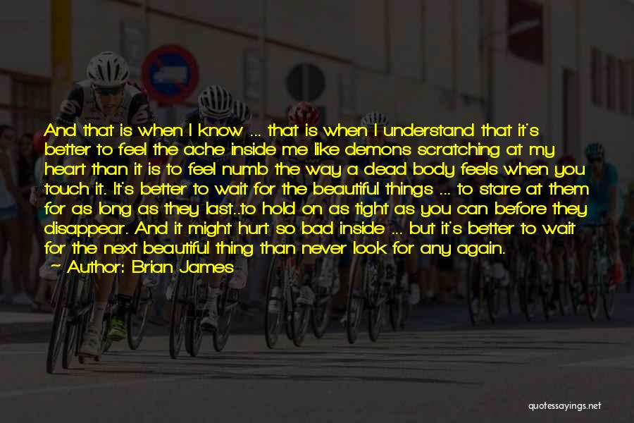 I Feel So Hurt Inside Quotes By Brian James