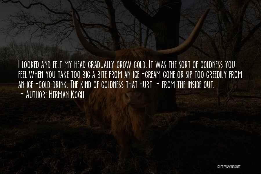 I Feel So Hurt Inside Quotes By Herman Koch