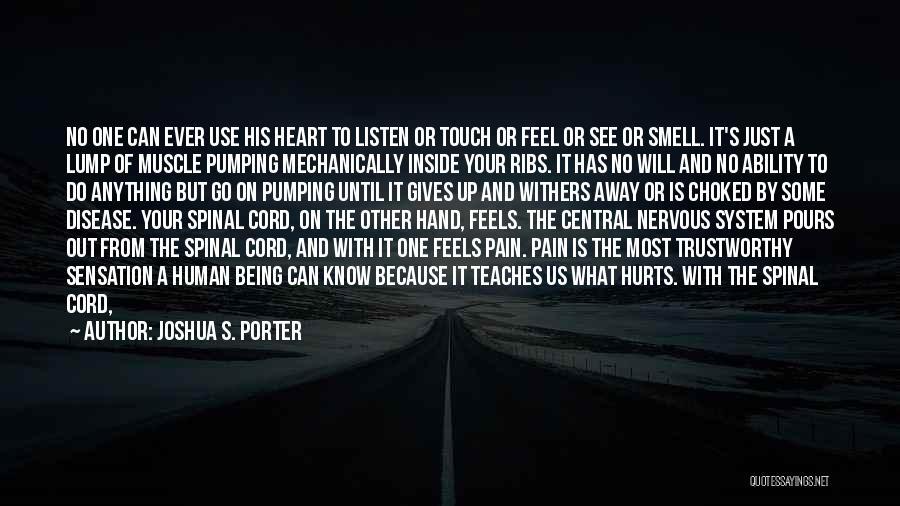 I Feel So Hurt Inside Quotes By Joshua S. Porter
