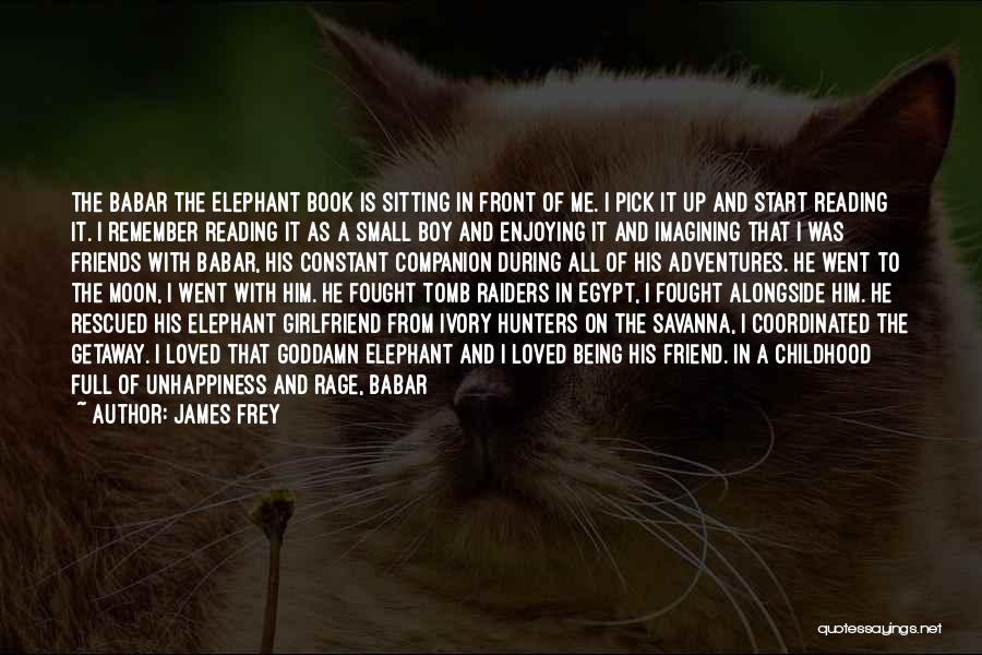 I Fought With My Friend Quotes By James Frey