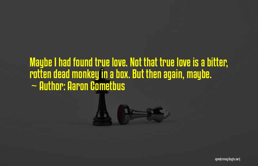 I Found Love Again Quotes By Aaron Cometbus