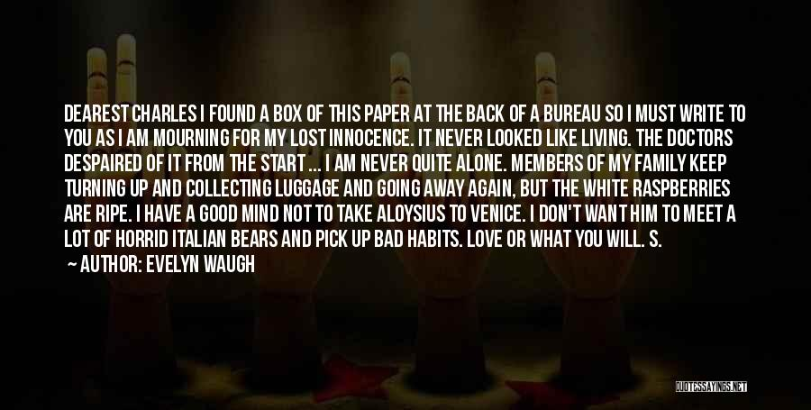I Found Love Again Quotes By Evelyn Waugh