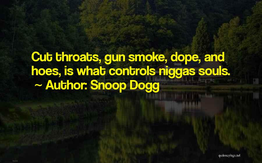 I Got Hoes Quotes By Snoop Dogg