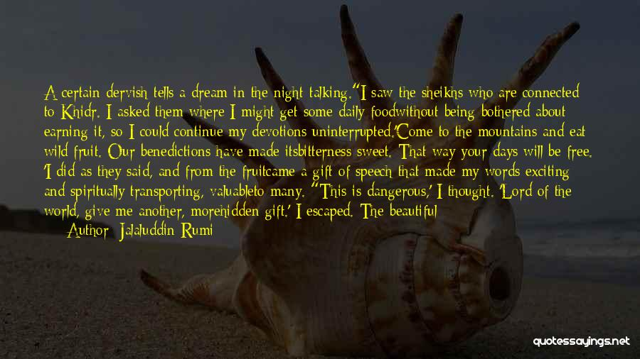 I Had A Dream Speech Quotes By Jalaluddin Rumi