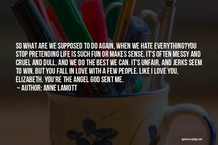 I Hate Jerks Quotes By Anne Lamott