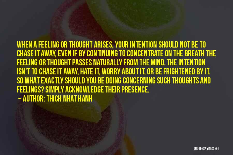 I Hate That Feeling When Quotes By Thich Nhat Hanh