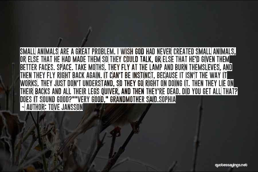 I Hate The Way I Don't Hate You Quotes By Tove Jansson