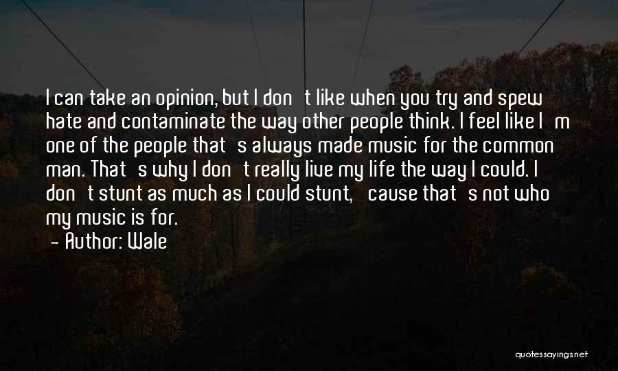 I Hate The Way I Don't Hate You Quotes By Wale