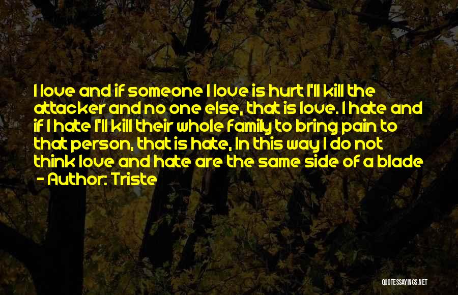 I Hate This Family Quotes By Triste