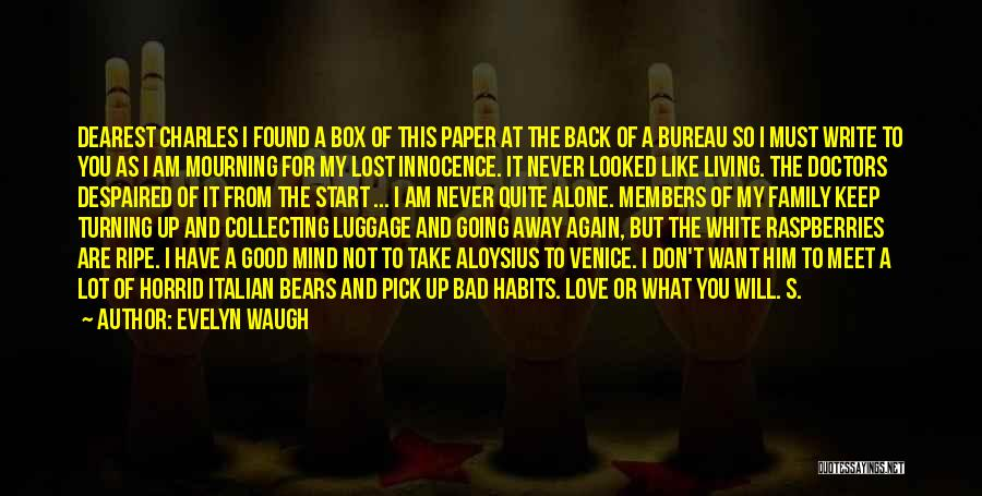 I Have Lost My Mind Quotes By Evelyn Waugh