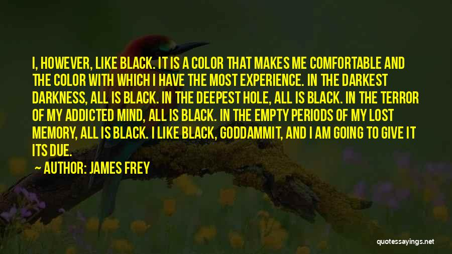 I Have Lost My Mind Quotes By James Frey