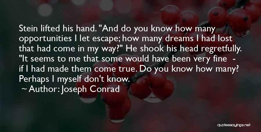 I Have Lost You Quotes By Joseph Conrad
