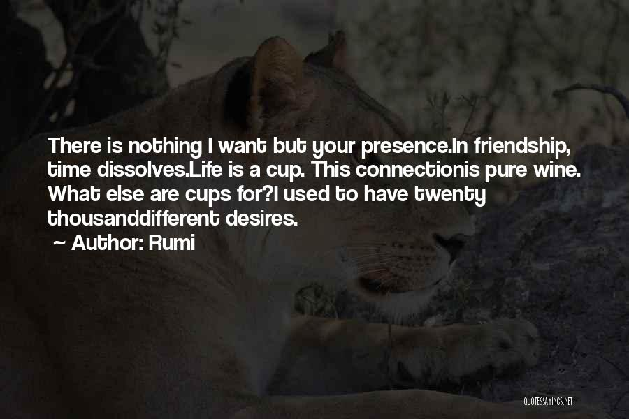 I Have Nothing But Time Quotes By Rumi