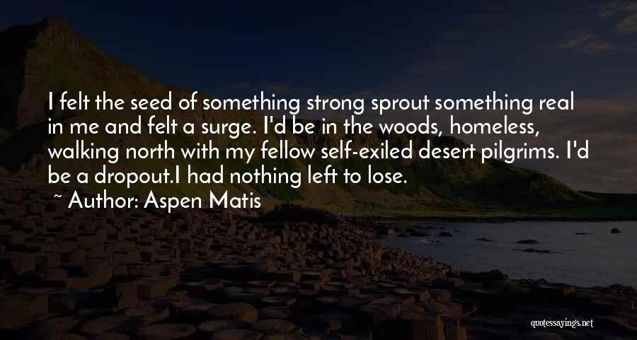 I Have Nothing Left To Lose Quotes By Aspen Matis