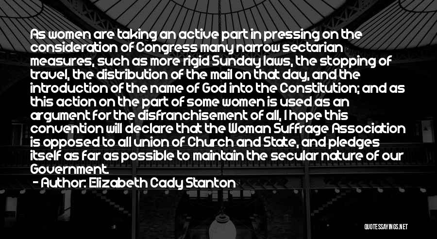 I Hope For Quotes By Elizabeth Cady Stanton