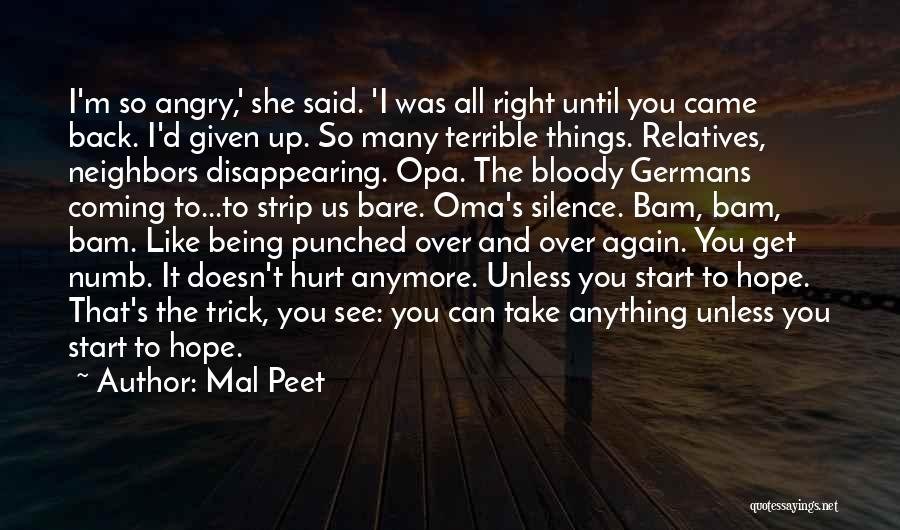 I Hope You Get Hurt Quotes By Mal Peet