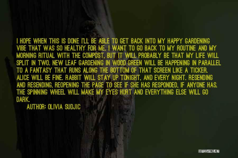 I Hope You Get Hurt Quotes By Olivia Sudjic