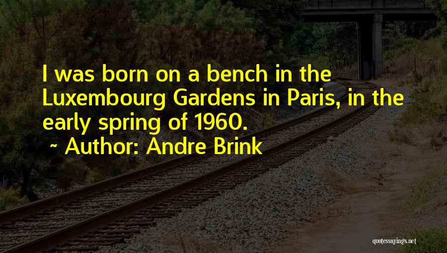 I Just Had An Epiphany Quotes By Andre Brink