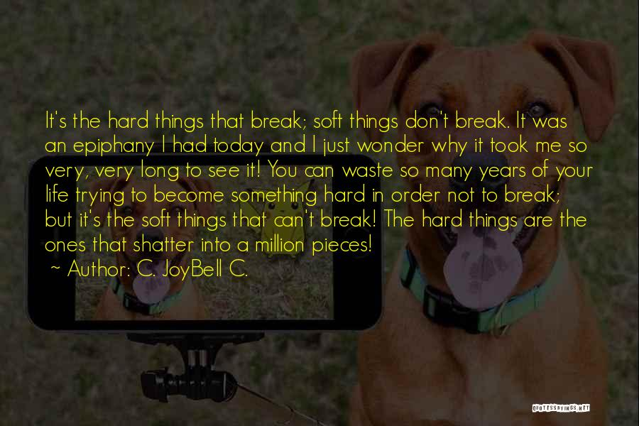 I Just Had An Epiphany Quotes By C. JoyBell C.