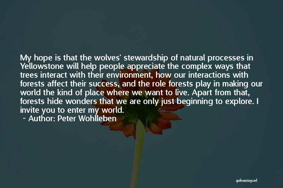 I Just Want Success Quotes By Peter Wohlleben