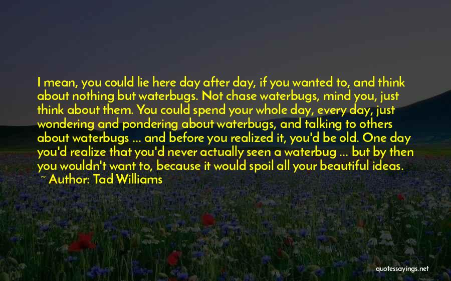 I Just Want To Be Beautiful Quotes By Tad Williams