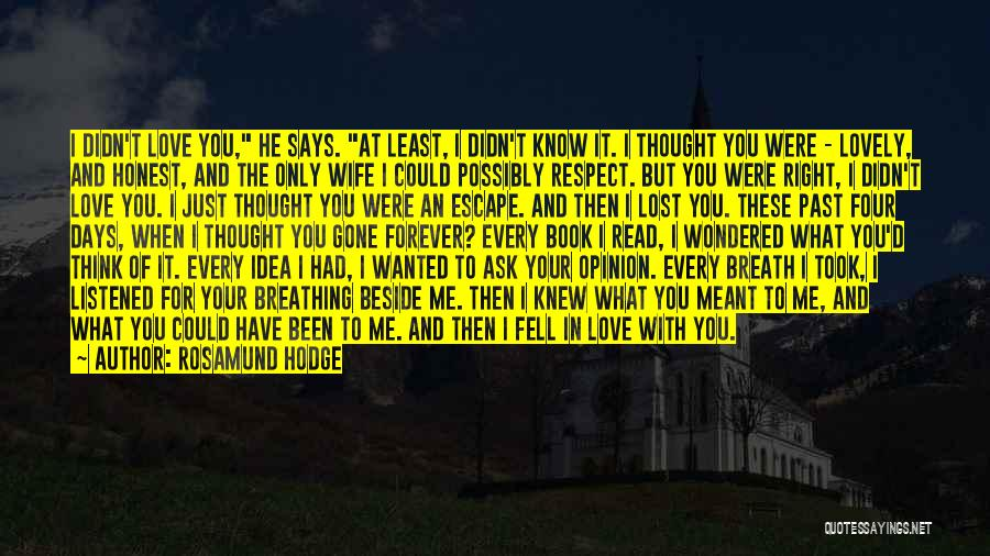 I Knew You Didn't Love Me Quotes By Rosamund Hodge