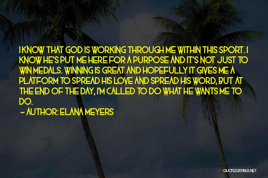 I Know God Is Working Quotes By Elana Meyers