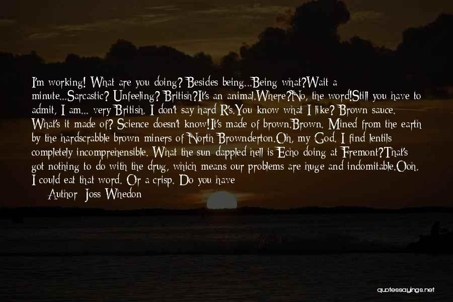 I Know God Is Working Quotes By Joss Whedon