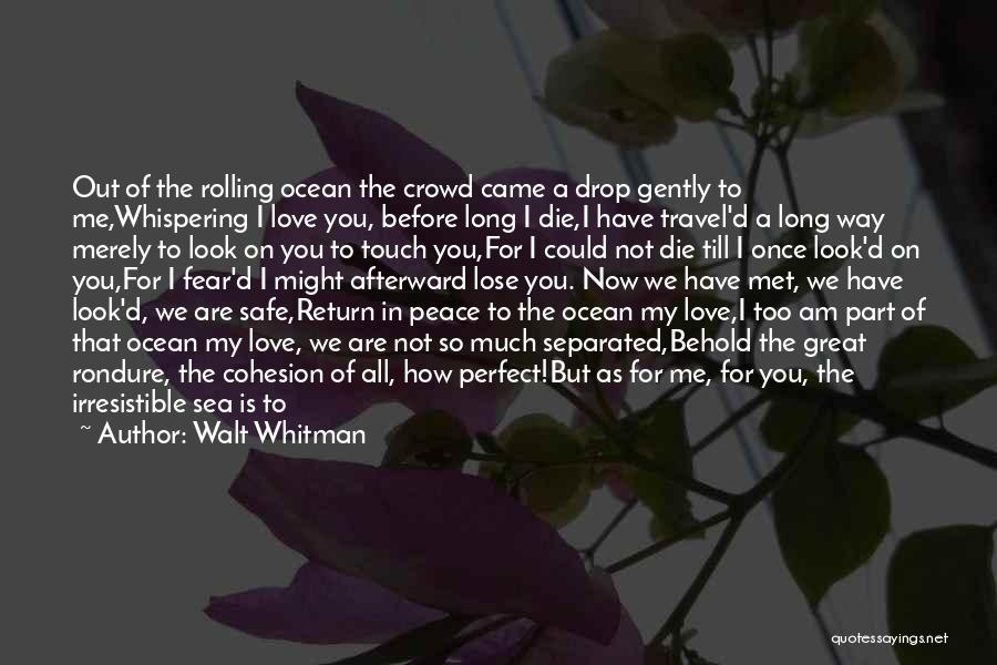 I Know I Am Not Perfect For You Quotes By Walt Whitman