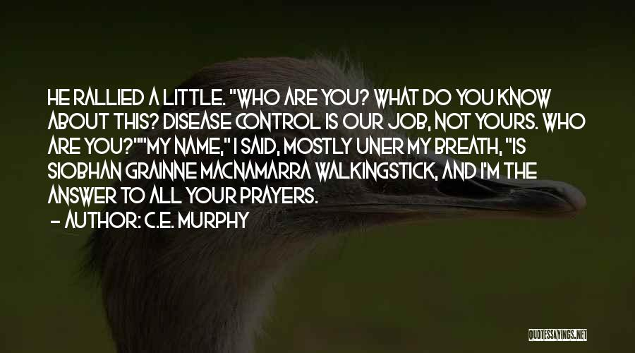 I Know I'm Not Yours Quotes By C.E. Murphy