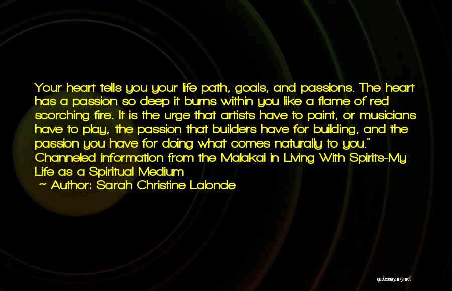 I Like To Play With Fire Quotes By Sarah Christine Lalonde
