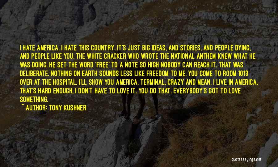 I Love Doing Me Quotes By Tony Kushner